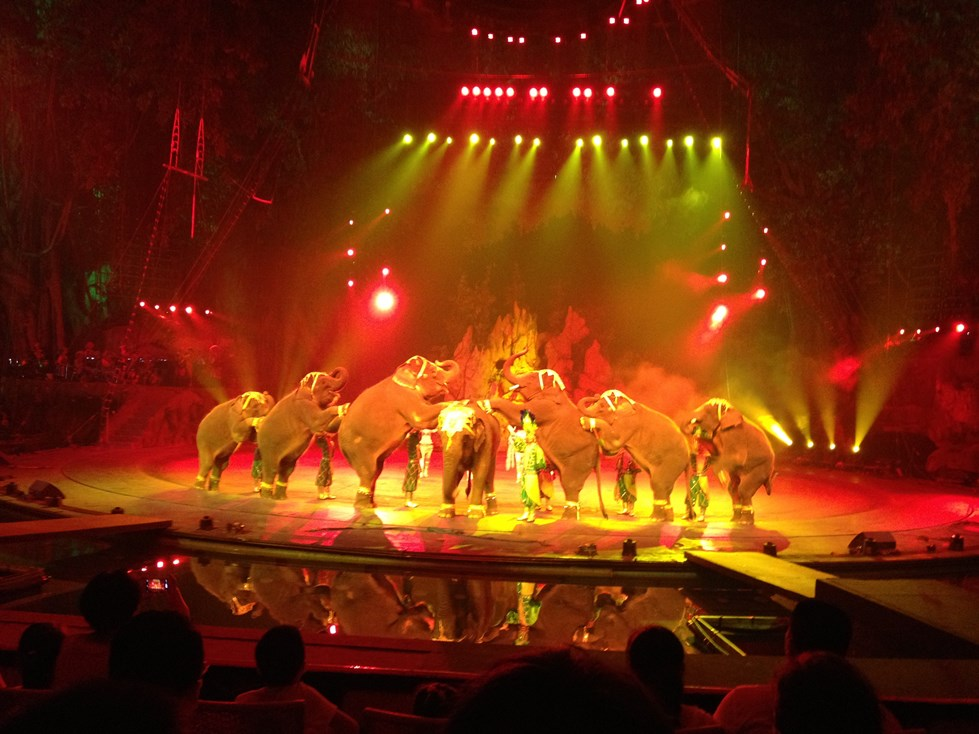 Chimelong International Circus 08