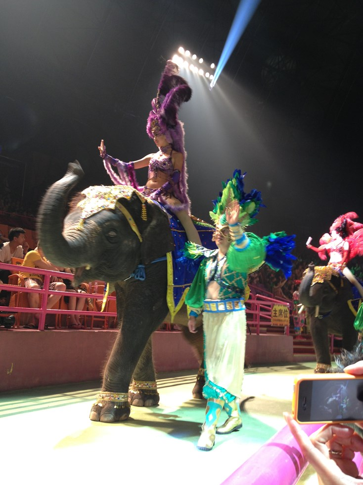 Chimelong International Circus 15